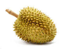 isolerad durian Royaltyfri Bild