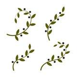 Isolerad för vektorlogo för olivgrön filial uppsättning Olje- logotypsamling Freddag Arkivbilder