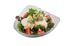 Isolerad feg sallad för bröst inklusive toppning för avokado, för tomat och för röd ek med den lösa raket och dressingen Royaltyfri Bild