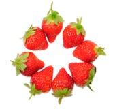Isolerad frukt Royaltyfri Fotografi