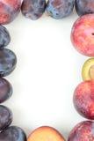 isolerad frukt för ramen 3d framför white Royaltyfri Bild