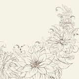 Isolerad girland av krysantemumet. Royaltyfria Foton