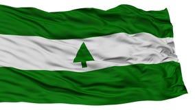 Isolerad grönt bältestadsflagga, Amerikas förenta stater Royaltyfri Foto