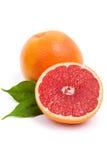 Isolerad grapefrukt Royaltyfri Fotografi