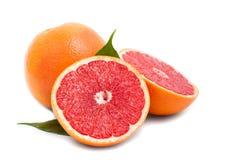 isolerad grapefrukt Fotografering för Bildbyråer