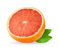 isolerad grapefrukt Grapefrukter som isoleras på vit bakgrund, med den snabba banan Royaltyfria Bilder