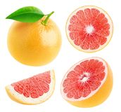 Isolerad grapefruktsamling arkivbilder