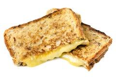 Isolerad grillad ostsmörgås Arkivfoto