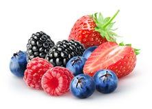 Isolerad grupp av bär Blackberry hallon, blåbär, jordgubbefrukter som isoleras på vit bakgrund, med urklippbanan arkivbilder