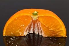 Isolerad halva av mandarinen på mörkerbakgrund - closeup Arkivfoton