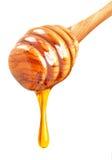 isolerad honung Royaltyfria Bilder