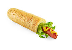 Isolerad Hotdog Arkivbild