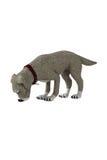 isolerad hund Royaltyfria Bilder