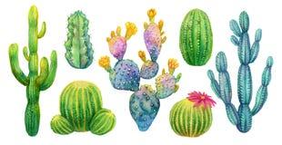 Isolerad illustration för kaktus fastställd vattenfärg stock illustrationer