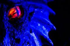 isolerad illustration för öga för drake för amulettbakgrundsblack Arkivbilder