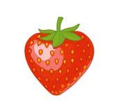 isolerad jordgubbe Royaltyfri Illustrationer