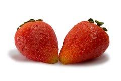 isolerad jordgubbewhite Arkivfoton