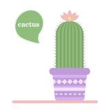 Isolerad kaktus i en kruka Symbol av kaktusblomman Spring är här igen Royaltyfria Foton