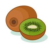 Isolerad Kiwi också vektor för coreldrawillustration Stock Illustrationer