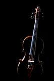 Isolerad klassisk musikfiol Royaltyfri Foto