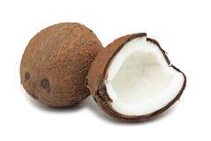 isolerad kokosnöt Arkivbild