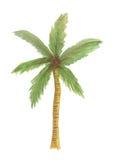 Isolerad kokospalmvattenfärgillustration, isolerad natur Arkivbilder
