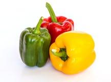 Isolerad kulör paprika (peppar) Arkivfoton