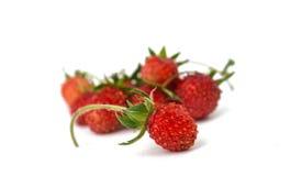 Isolerad lös jordgubbe arkivfoton