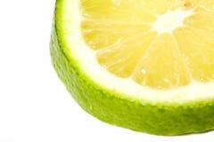 isolerad limefruktskiva Royaltyfria Foton