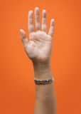 Isolerad lyftt kvinnlig hand Arkivbilder