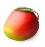 Isolerad mangofrukt Royaltyfri Fotografi