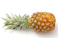 isolerad mogen white för ananas Arkivfoto