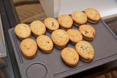 Isolerad muffin för muffinkeks resepti Arkivbild