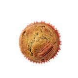 Isolerad muffin för pecannötmutter Fotografering för Bildbyråer