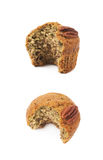Isolerad muffin för pecannötmutter Arkivfoto