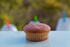 Isolerad muffin på grön bakgrund Royaltyfria Foton