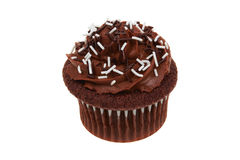 Isolerad muffinchoklad Arkivfoton