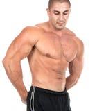 isolerad muskulös sexig white för torso mycket arkivbilder