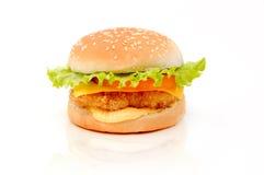 Isolerad ny och smaklig hamburgare Arkivbild
