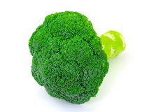 Isolerad ny saftig grön broccoli arkivfoton