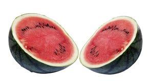 Isolerad ny vattenmelon Arkivbilder