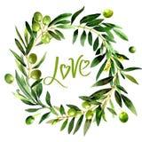 Isolerad olivträdkrans i en vattenfärgstil stock illustrationer