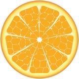isolerad orange Arkivbild