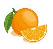 isolerad orange Vektor Illustrationer