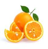 isolerad orange white för bakgrund frukt Arkivbild
