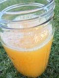 isolerad orange white för fruktsaft fotografering för bildbyråer
