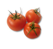 isolerad organisk naturlig tomat på vit bakgrund Royaltyfri Bild