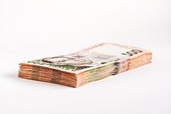 Isolerad packe av hryvnia 500 Arkivfoto