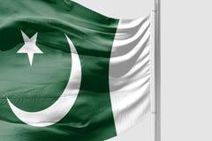 Isolerad pakistansk flagga som vinkar realistiskt tyg 3d Royaltyfri Fotografi
