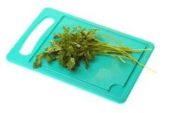 isolerad parsley fattar Arkivfoton